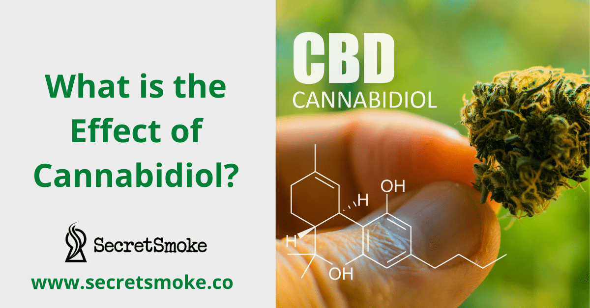 What is the Effect of Cannabidiol?